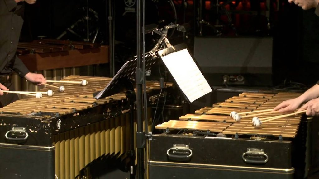 musikvideo-steve-reich-mallet-quartet-philo-media